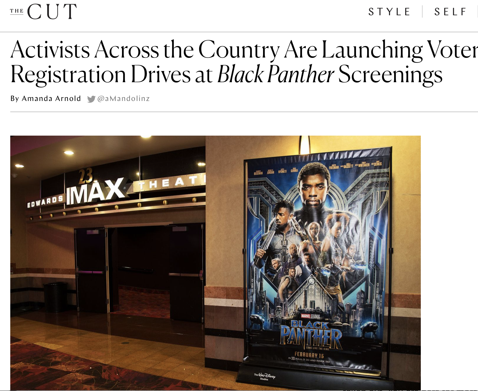 Activists Across the Country Are Launching Voter Registration Drives at Black Panther Screenings