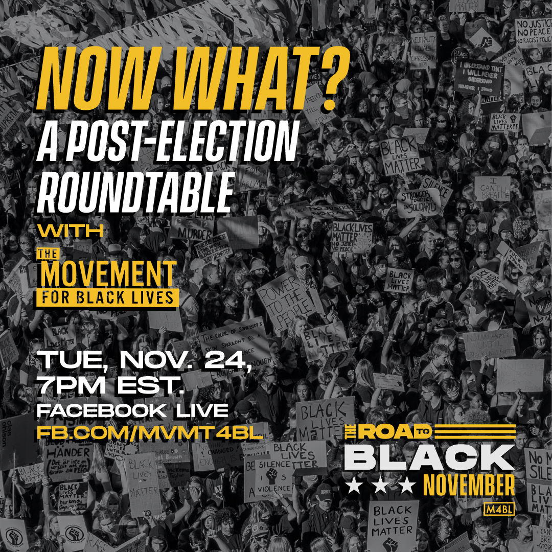 Event image: Now what? A post-election roundtable